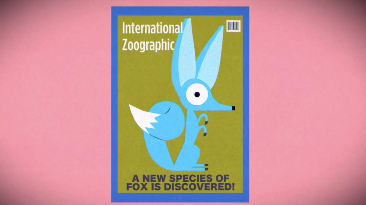 The Fox Conundrum thumbnail